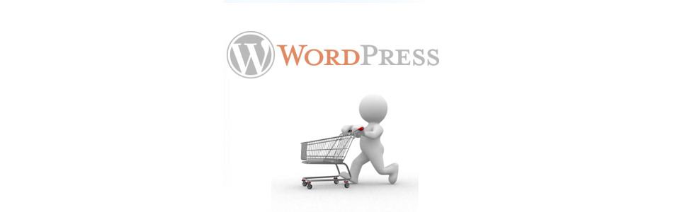 Ecommerce MagentoGo Wordpress Bespoke Solutions